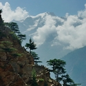CEDAR VIEW, Kinnaur Valley