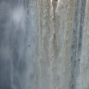 KAIETEUR FALLS AND SWIFTS