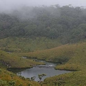 The Horton Plains