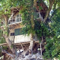 The world's largest treehouse south of Kavieng New Ireland