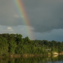RAINBOW OVER THE ESSEQUIBO RIVER, Iwokrama