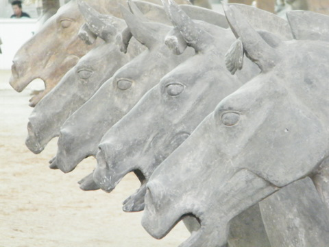 Terra Cotta Army - the emperors horses