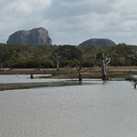 Elephant Rock, Yala