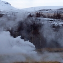 Steam vents and Birch trees
